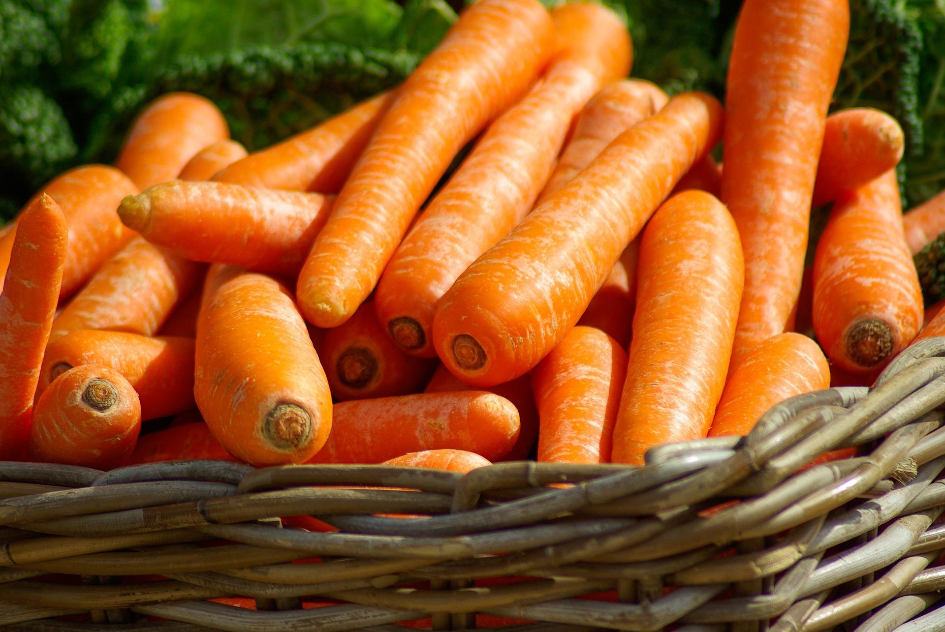 temps de cuisson carottes