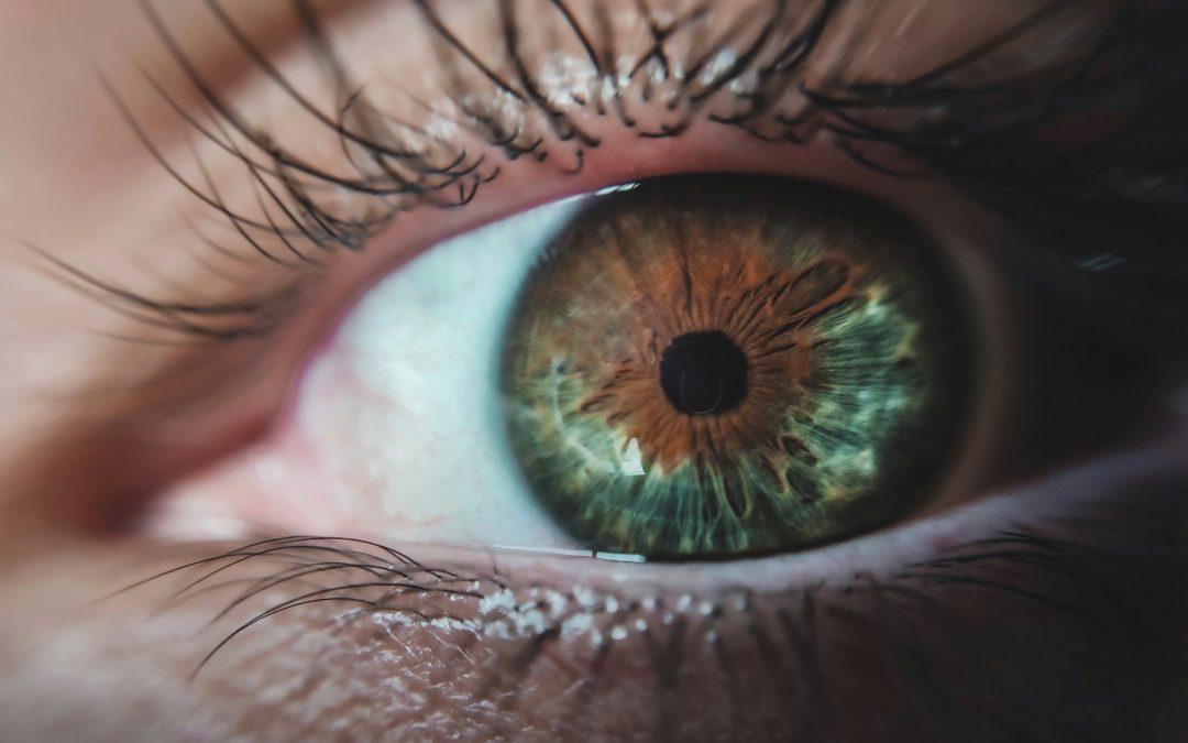 Comment savoir si les lentilles de vues sont à la bonne taille ?